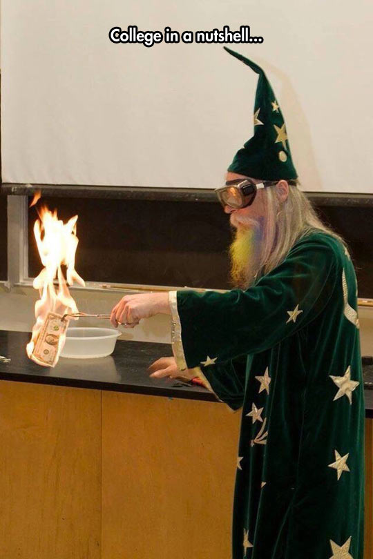 funny-college-wizard-fire-money