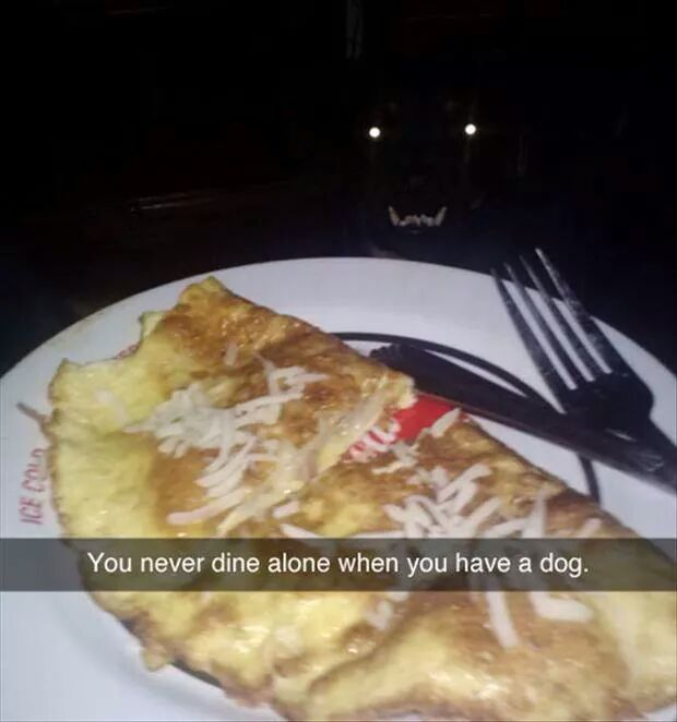 funny-dinner-dog-creepy