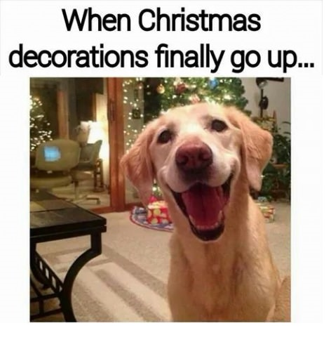funny-dog-smile-christmas-decoration