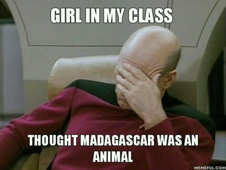 funny-madagaskar-meme-animals