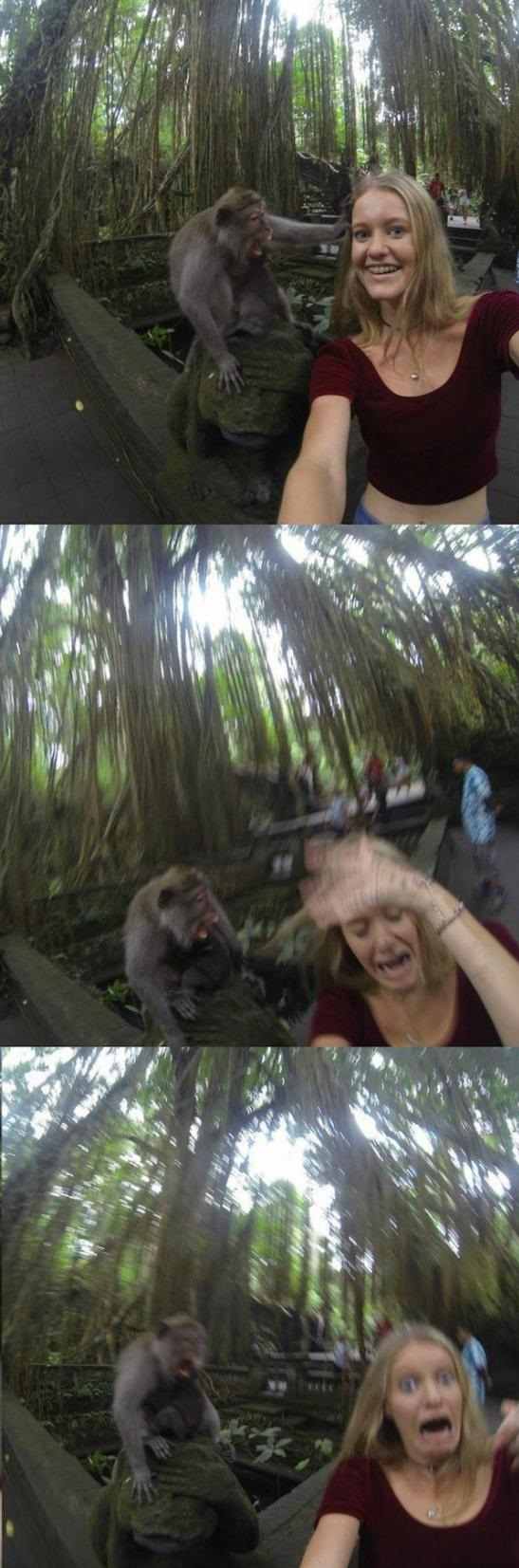 funny-monkey-girl-fail