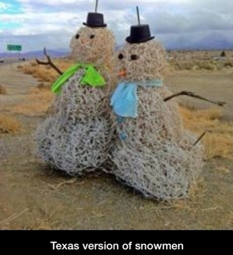 funny-texas-version-snowman