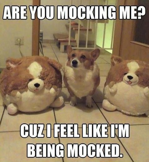 funny-toys-dogs-mock