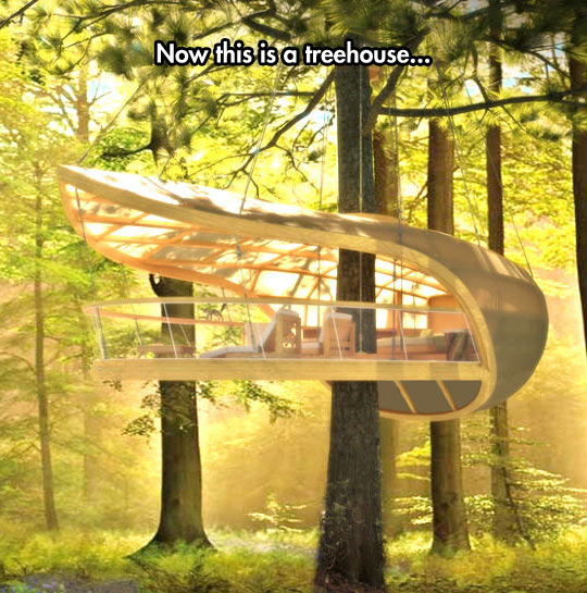 funny-tree-house-forest-house-wood