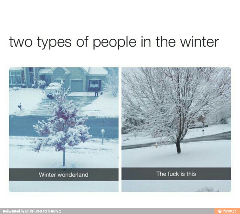 funny-winter-teo-types-people