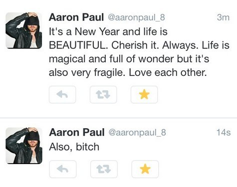 aaron-paul-bitch-wishes