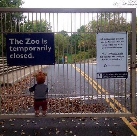 children-jokes-closed-zoo