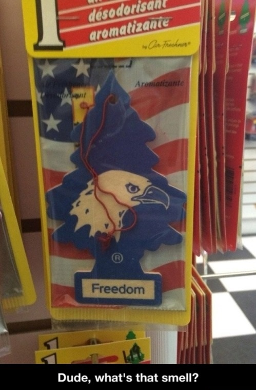 freedom-smell-eagle-murica