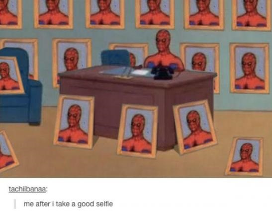good-selfie-apiderman-meme