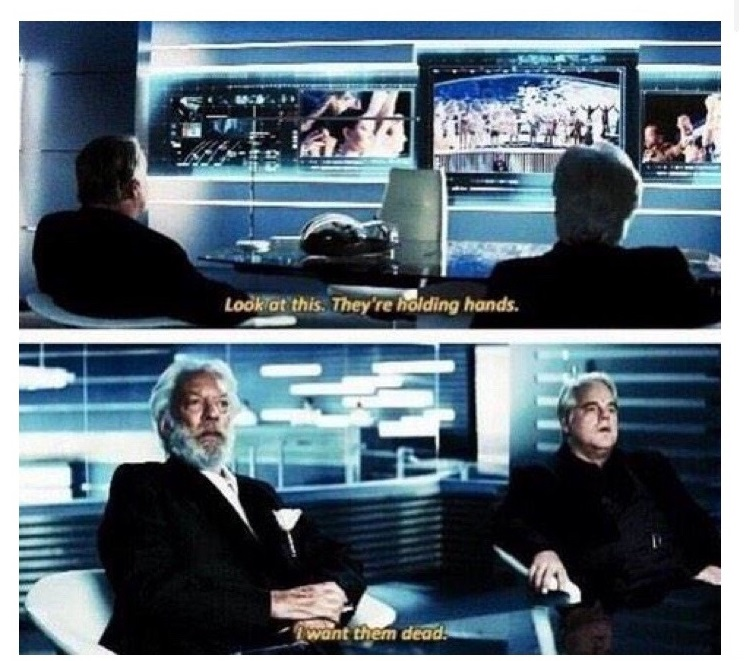 valentines-day-hunger-games-holding-hands