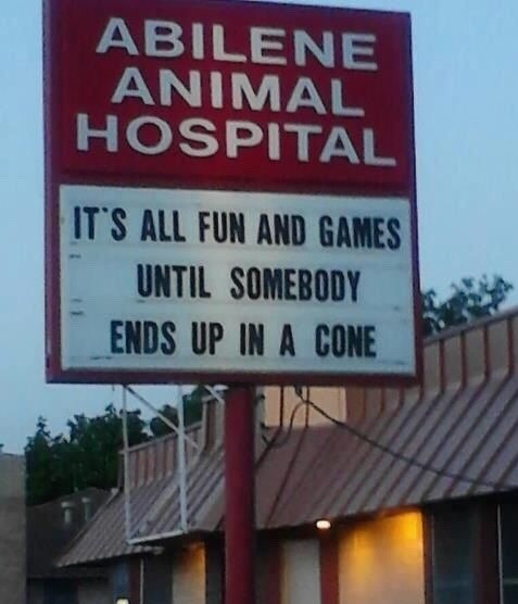 animals-hospital-sign-fun