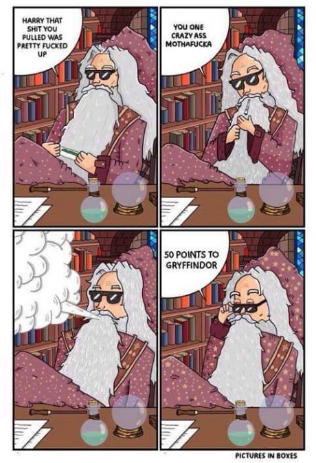 dumbledore-weed-harry-potter