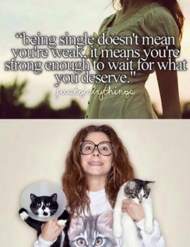 forever-alone-cat-lady