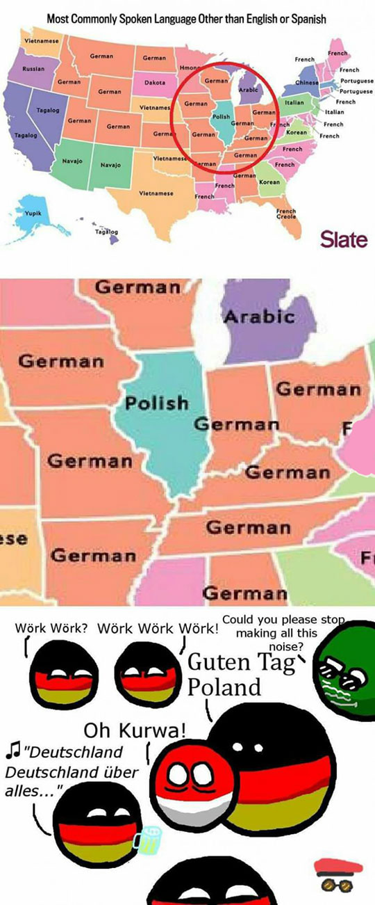 funny-USA-map-language-Polish