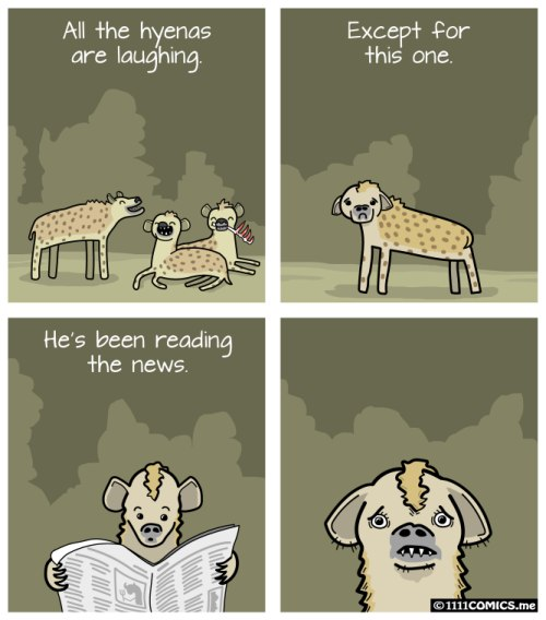 hyenas-laughing-reading-news
