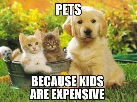 pets-kids-expensive-true