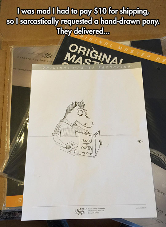 funny-pony-drawing-shipment
