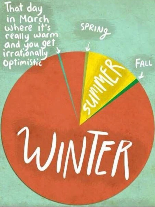 funny-winter-summer-fall-optimistic-pie-chart