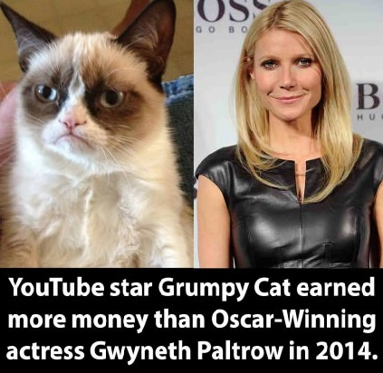 grumpy-cat-gwyneth-paltrow