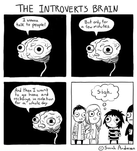 Image result for introvert jokes
