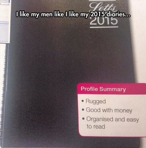 diary-men-summary