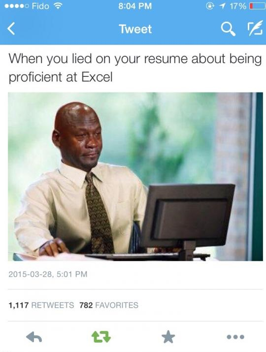 resume-excel-job