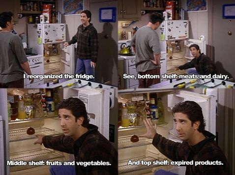 ross-friends-products-fridge