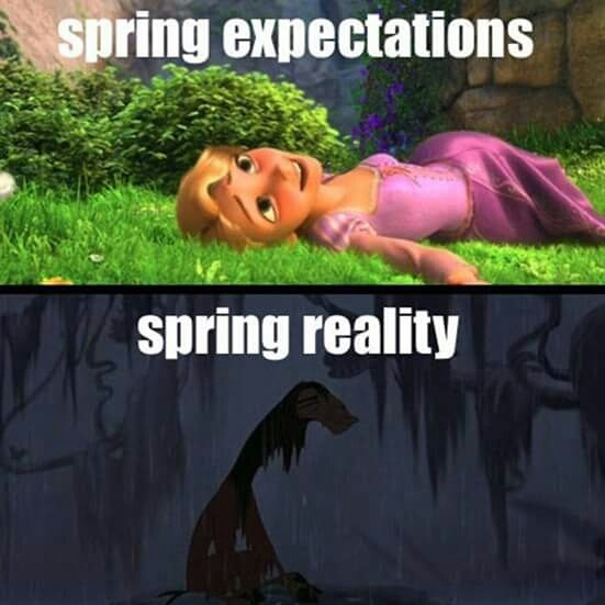 spring-expectations-reality