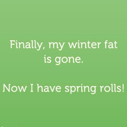 winter-fat-spring-roll