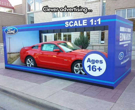 cool-Ford-car-packaging-scale
