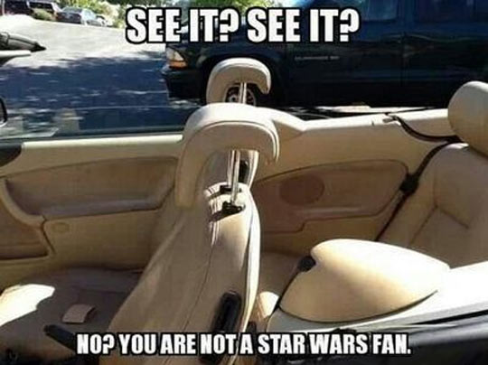 funny-Star-Wars-fan-seats-car