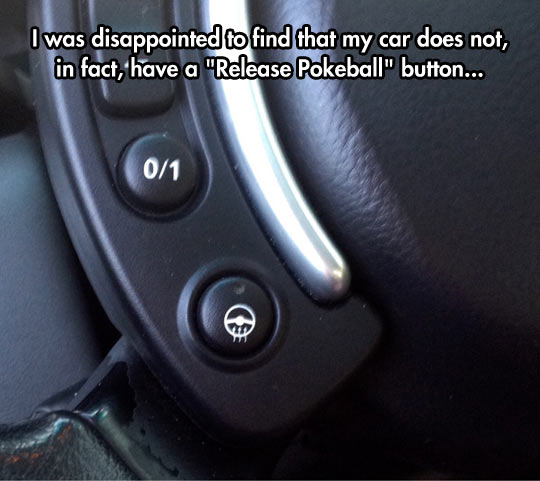funny-steering-wheel-car-button