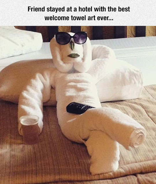 funny-welcome-towel-art-hotel