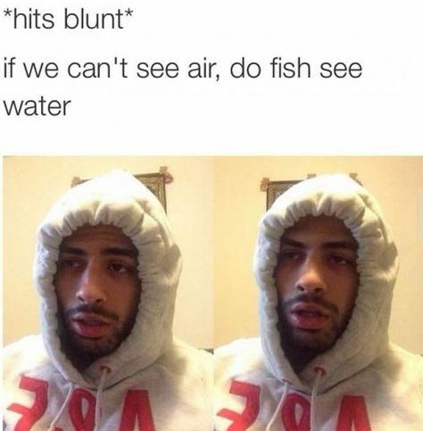 hits-blunt-air-water-fish