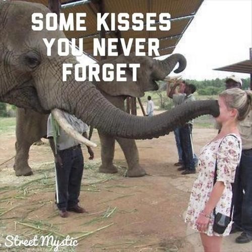 kisses-never-forget