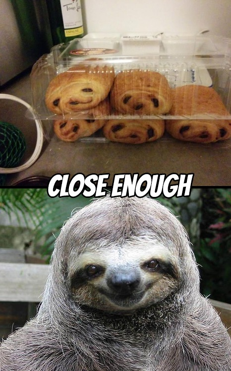 sloth-sweets-close-enough