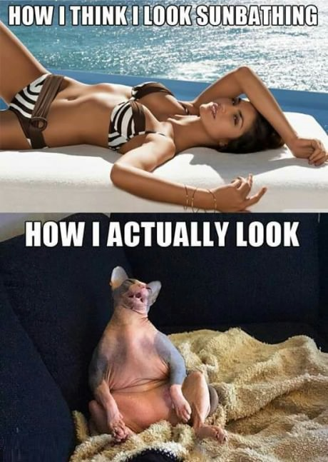 sunbathing-expectation-reality