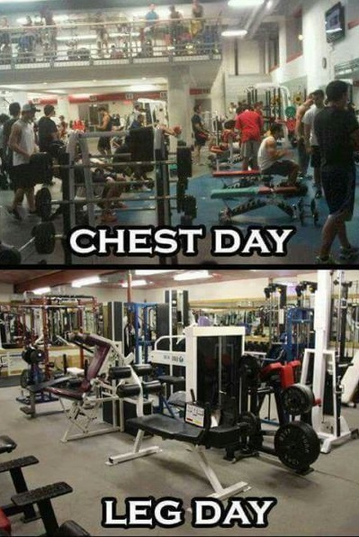 chest-day-leg-day-gym
