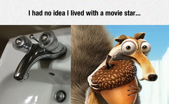 funny-Ice-Age-sink-squirrel