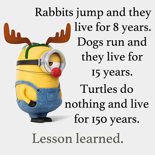 Lessons Learned Quotes Funny. QuotesGram