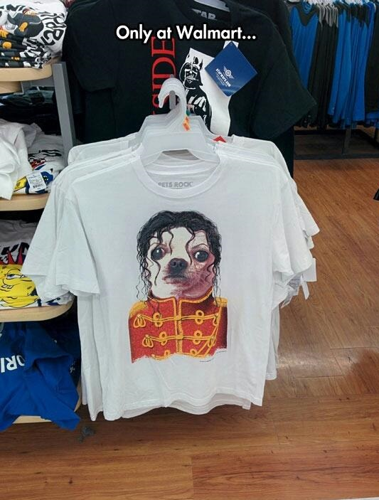 things you find at walmart