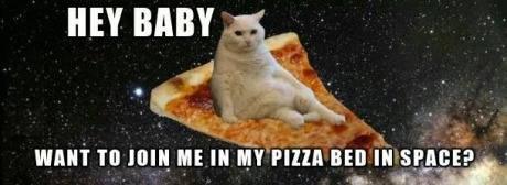 cat-pizza-space-galaxy
