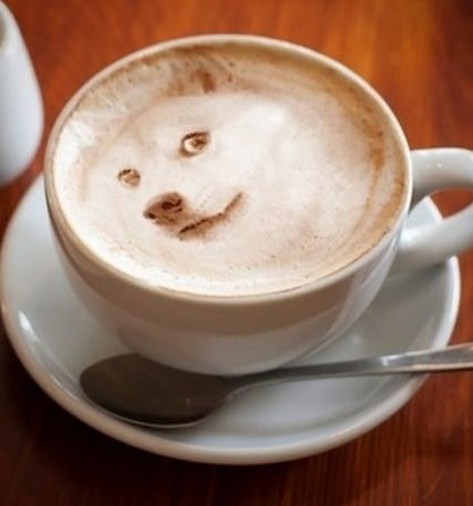 doge-morning-coffee-cup