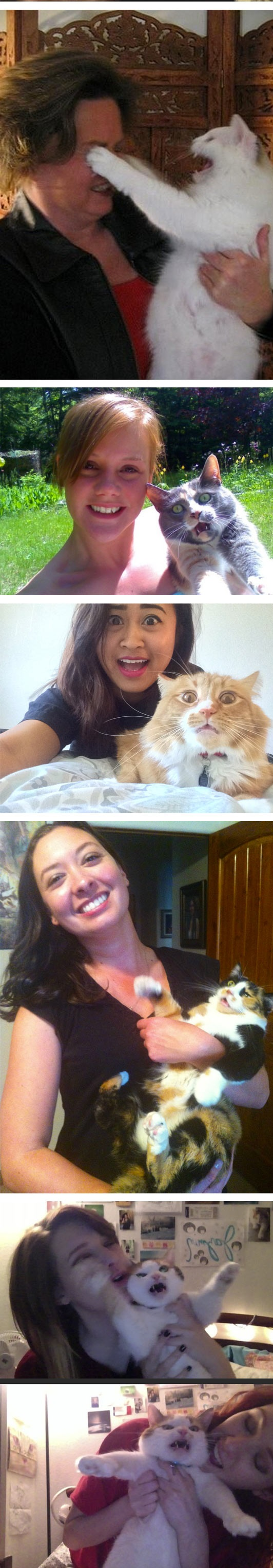 funny-cat-selfie-lick-owner-mad-fight