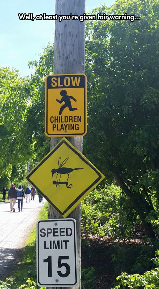 funny-sign-warning-street-mosquitoes-kid