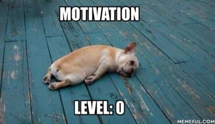motivation-level-lazy-puppy