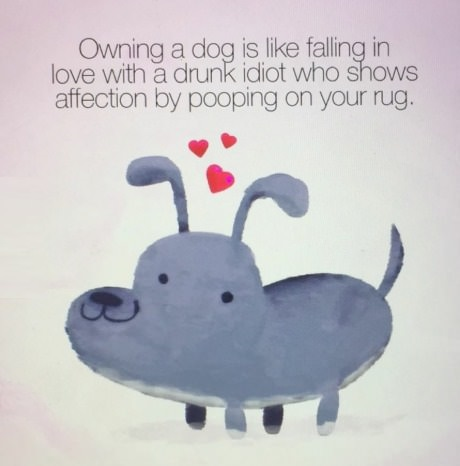 qwning-dog-drunk-love-poop