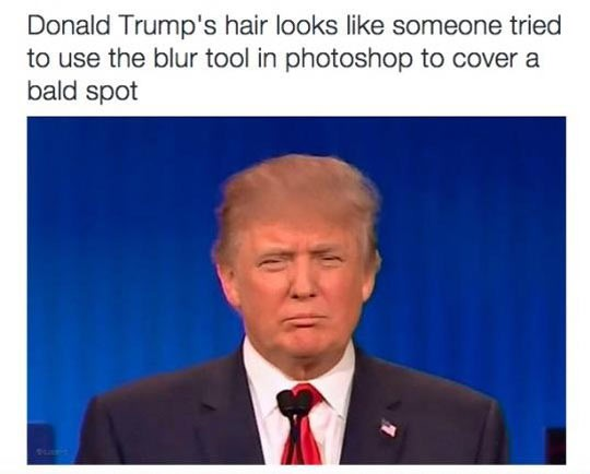 funny-Donald-Trump-hair-photoshop