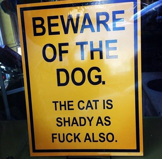 funny-beware-dog-sign-yellow-warning