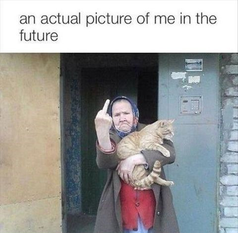 me-future-cat-grandma